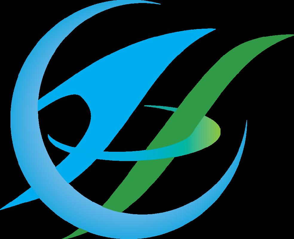 Nassit Logo 5